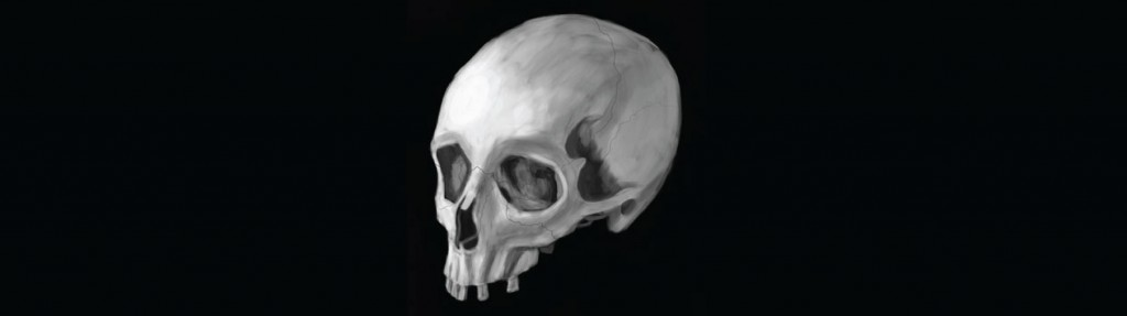 The Human Skull for the meaning of life article