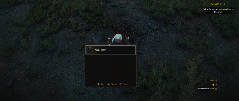 Witcher 3 - Bonus Skill Points (Magic Acorn)