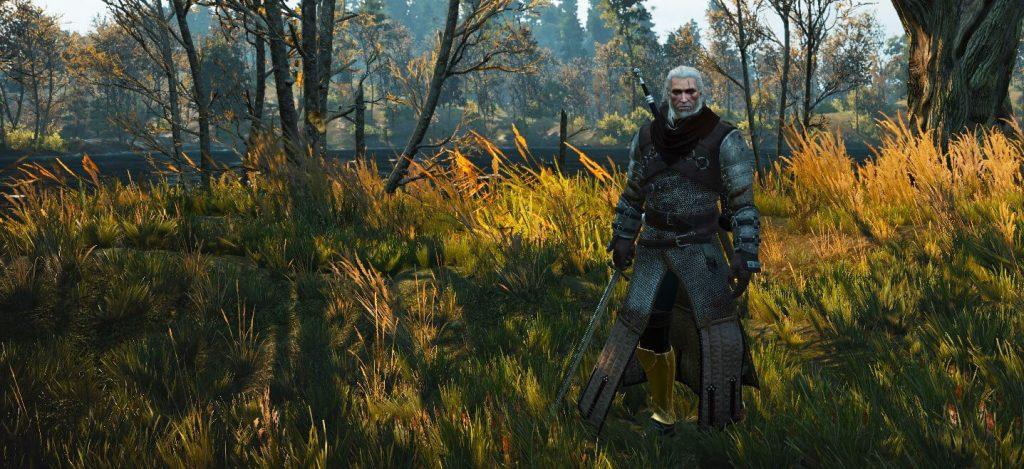 Witcher 3 Ursine Tank Hybrid Build Banner